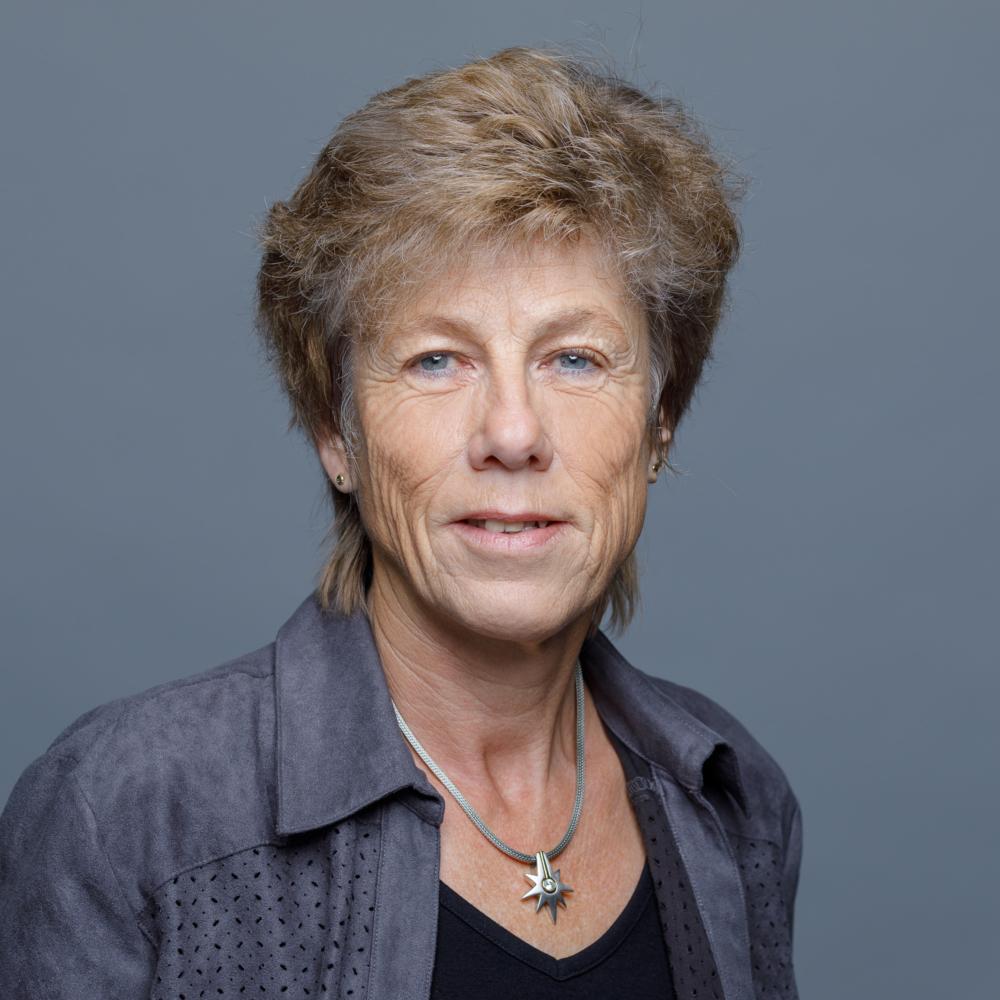 Elisabeth Heinzer, Steuern